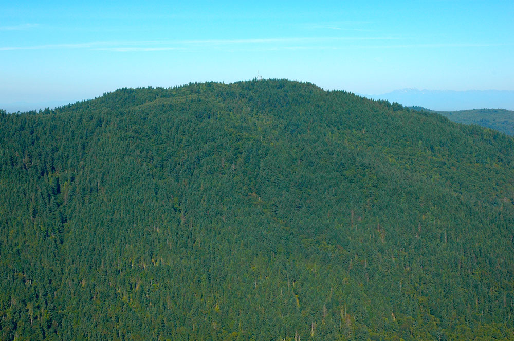 Looking west at aptly named Squak Mountain.